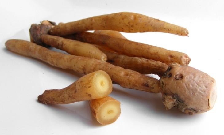 핑거루트는 생강과 식물로 열성이 강해 평소 열이 많은 사람들은 두드러기, 가려움증 등 부작용이 나타나기 쉽다.