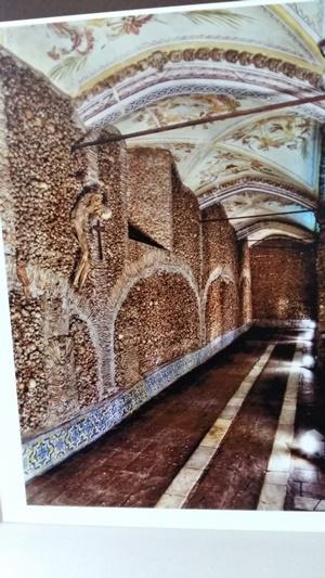 5000구 시신의 유골이 벽면을 메우고 있는 포르투갈 에보라의 뼈예배당